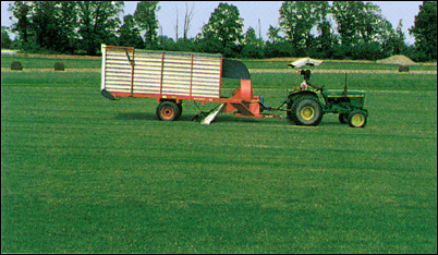 Turf Vacuum - Contact us in Haymarket, Virginia, for quality turf grass, grass sod, and landscape material.